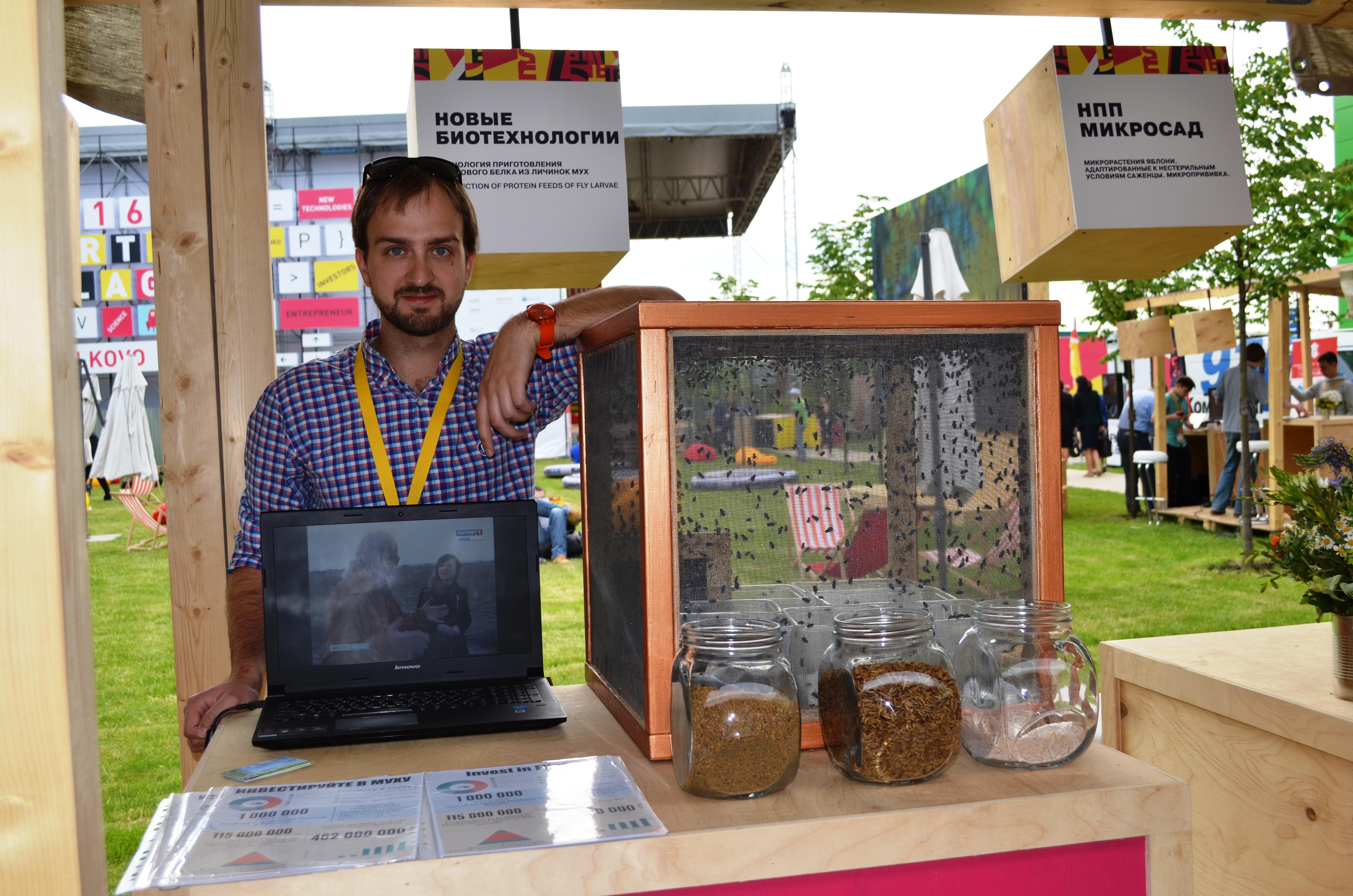 Белок из мух: биотех-стартапы помогут с переработкой отходов