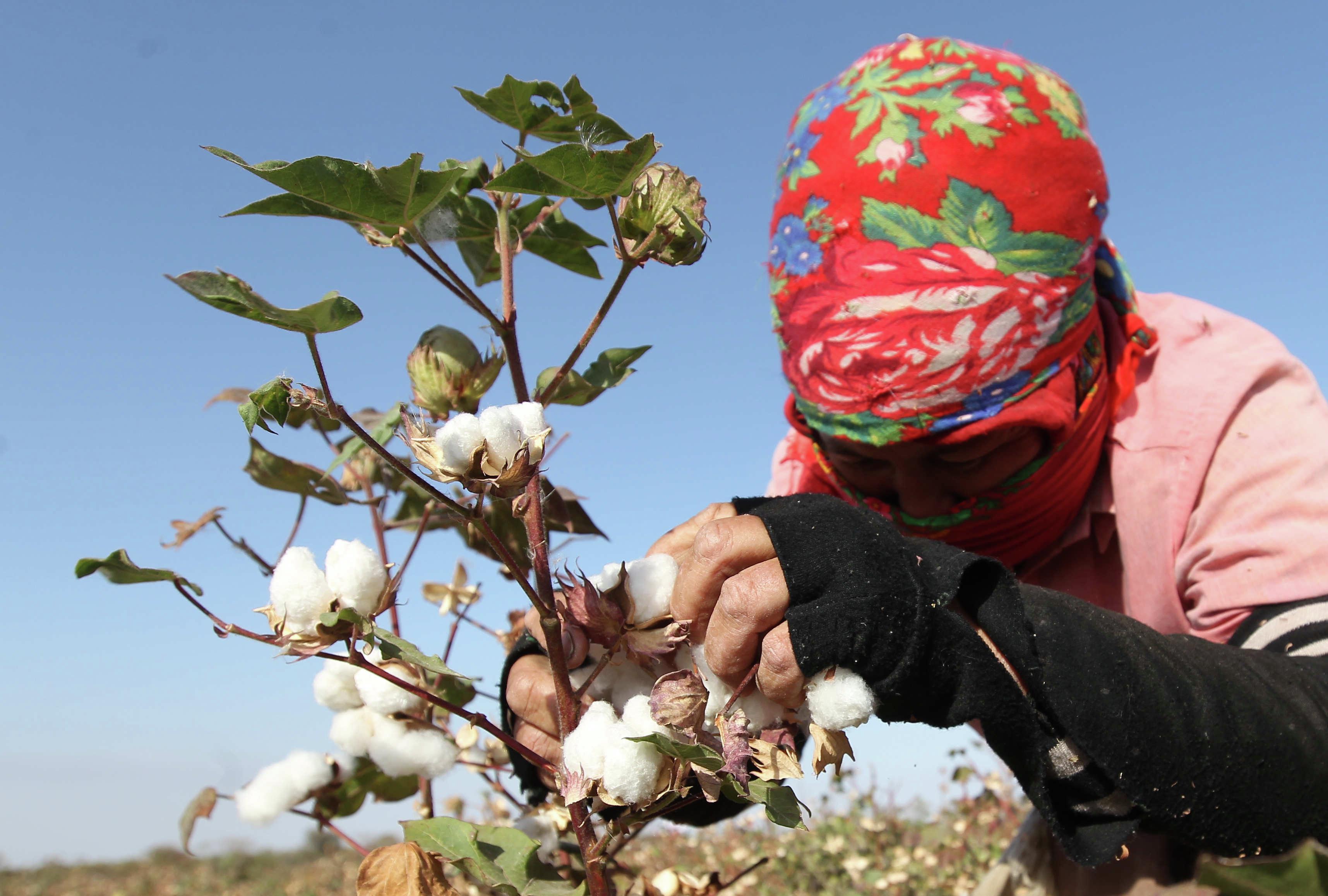 «Золотое время» настало: рейтинг экономик Центральной Азии