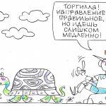 Региональное переформатирование – ключ к развитию России