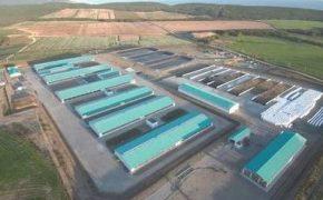 Лучшая инвестновость дня: На Сахалине запустят крупную молочно-товарную ферму