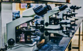 Ученые поняли, как появляется рак
