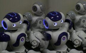 Роботов научили предсказывать объем продаж