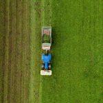 Агротех-стартапы предлагают обойтись без «химии»