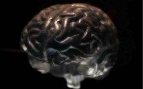 Пациенты назвали неявные симптомы рака мозга