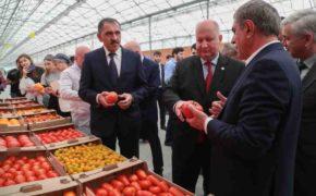 Лучшая инвестновость дня: В Ингушетии открылся овощной агрокомплекс