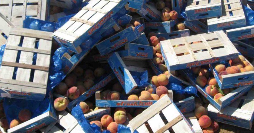 Власти предложили съесть санкционные продукты