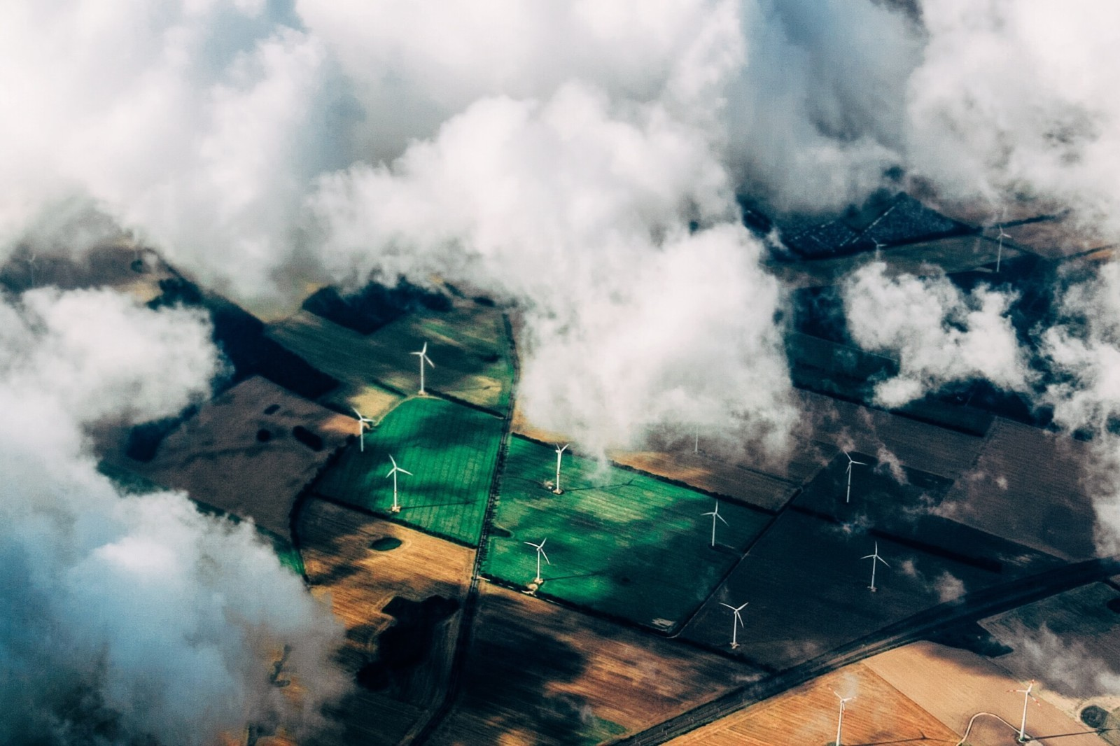 Зелёная экономика - это... Что такое Зелёная экономика?