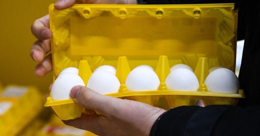 """Упаковка яиц в руке покупателя в дискаунтере """"365+"""" торговой сети """"Лента"""" в Новосибирске. Александр Кряжев / РИА Новости"""